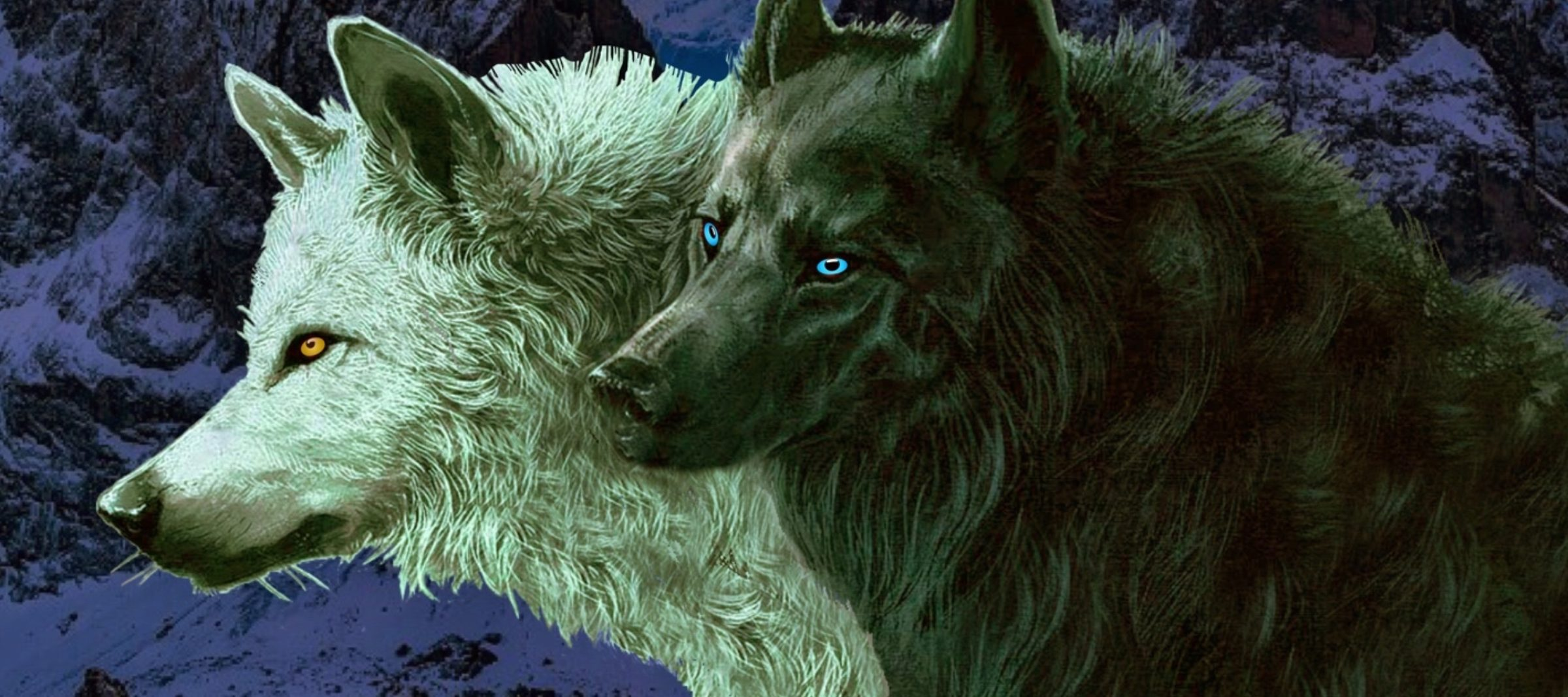 cropped-Two-Wolves-Header-Reverse-3.jpg